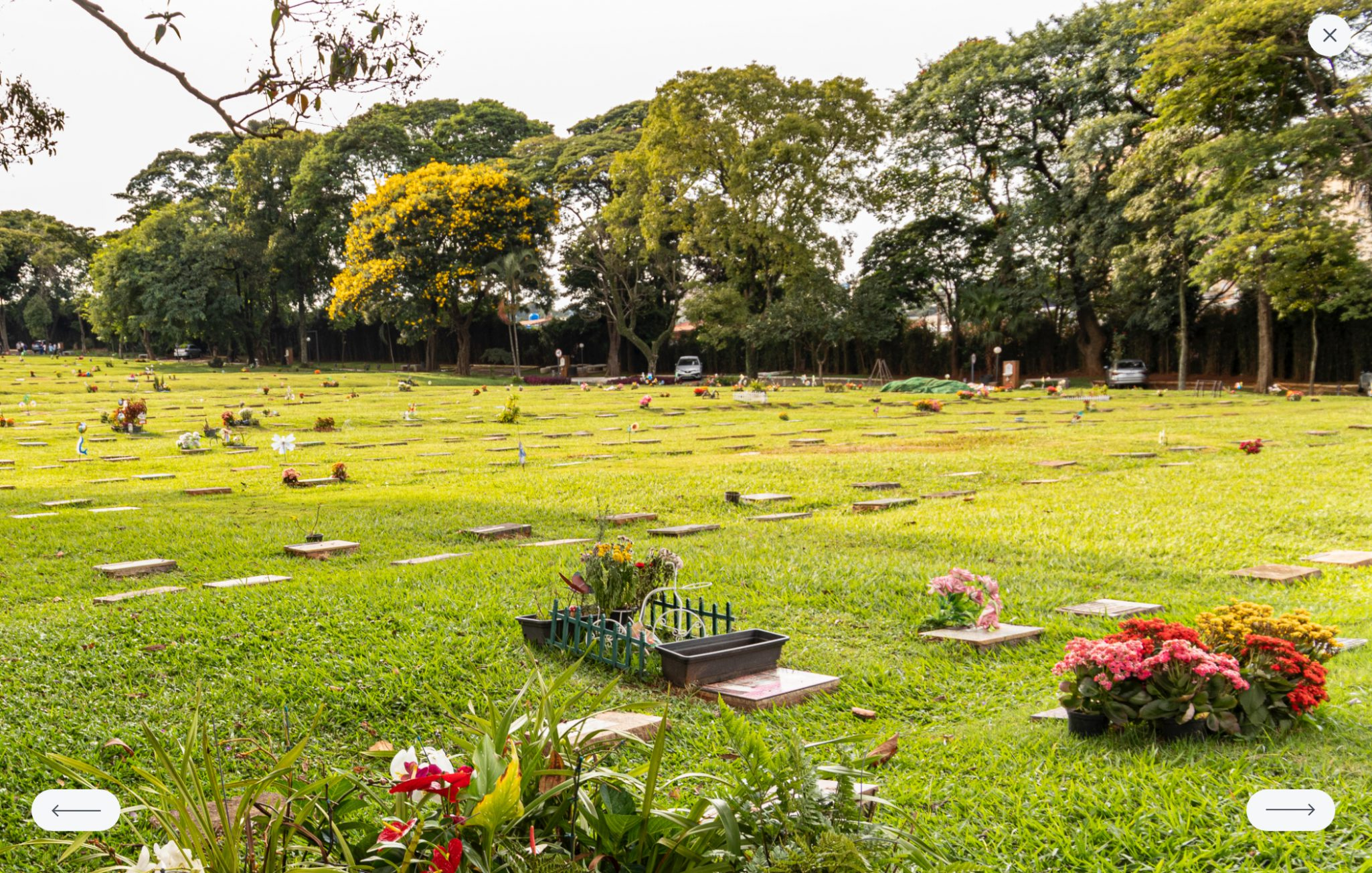 Cemitério Primaveras 2